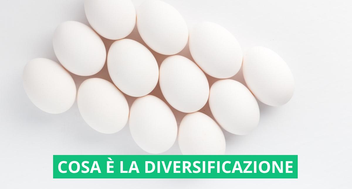 copertina che rappresenta 12 uova, metafora della diversificazione